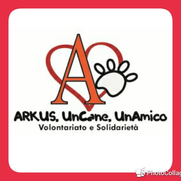 ARKUS, UNCANE, UNAMICO.