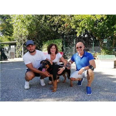 Comune della Spezia - ATHENA