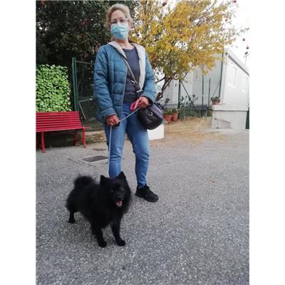 Comune della Spezia - NICK