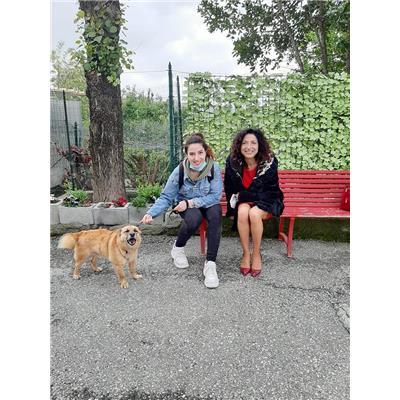 Comune della Spezia - GINO