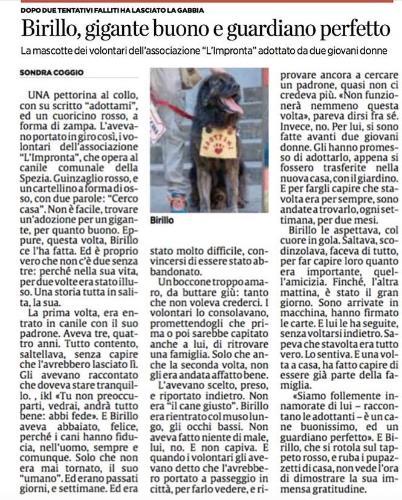 """Il riscatto del nostro Birillo raccontato dalla giornalista Sondra CoggiosuIl Secolo XIX!!!! Per agevolare la lettura dell'articolo lo riportiamo qui sotto in maniera integrale: Una pettorina al collo, con su scritto """"adottami"""", ed un cuoricino rosso, a forma di zampa. L'avevano portato in giro così, i volontari dell'associazione """"L'Impronta"""", che opera al canile comunale della Spezia. Guinzaglio rosso, e un cartellino a forma di osso, con due parole: """"Cerco casa"""". Non è facile, trovare un'adozione per un gigante, per quanto buono. Eppure, questa volta, Birillo ce l'ha fatta. Ed è proprio vero che non c'è due senza tre: perché nella sua vita, per due volte era stato illuso. Una storia tutta in salita, la sua. La prima volta, era entrato in canile con il suo padrone. Aveva tre, quattro anni. Tutto contento, saltellava, senza capire che l'avrebbero lasciato lì. Gli avevano raccontato che doveva stare tranquillo. «Tu non preoccuparti, vedrai, andrà tutto bene: abbi fede». E Birillo aveva abbaiato, felice, perché i cani hanno fiducia, nell'uomo, sempre e comunque. Solo che non era mai tornato, il suo """"umano"""". Ed erano passati giorni, e settimane. Ed era stato molto difficile, convincersi di essere stato abbandonato. Un boccone troppo amaro, da buttare giù: tanto che non voleva crederci. I volontari lo consolavano, promettendogli che prima o poi sarebbe capitato anche a lui, di ritrovare una famiglia. Solo che anche la seconda volta, non gli era andata affatto bene. L'avevano scelto, preso, e riportato indietro. Non era """"il cane giusto"""". Birillo era rientrato col muso lungo, gli occhi bassi. Non aveva fatto niente di male, lui, no. E non capiva. E quando i volontari gli avevano detto che l'avrebbero portato a passeggio in città, per farlo vedere, e riprovare ancora a cercare un padrone, quasi non ci credeva più. «Non funzionerà nemmeno questa volta», pareva dirsi fra sé. Invece, no. Per lui, si sono fatte avanti due giovani donne. Gli hanno promesso di adottarlo, appena """